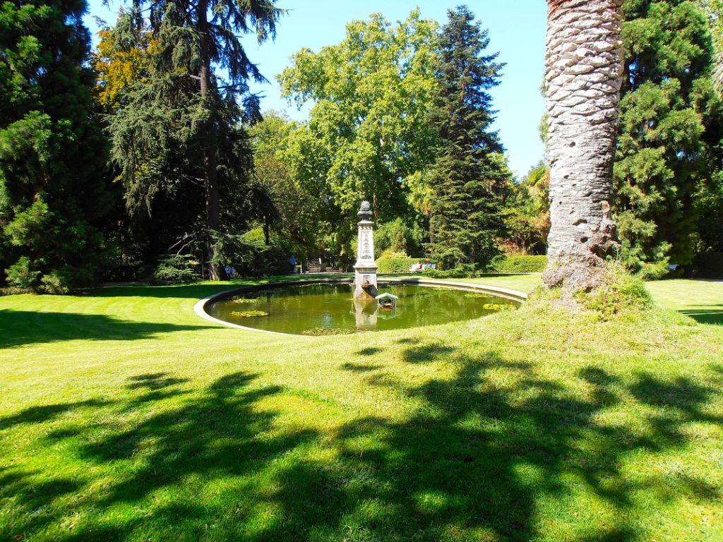 Real jard n bot nico acercaciencia for Biblioteca digital real jardin botanico
