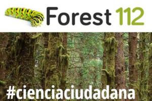 Ciencia ciudadana para luchar contra las plagas y enfermedades del bosque